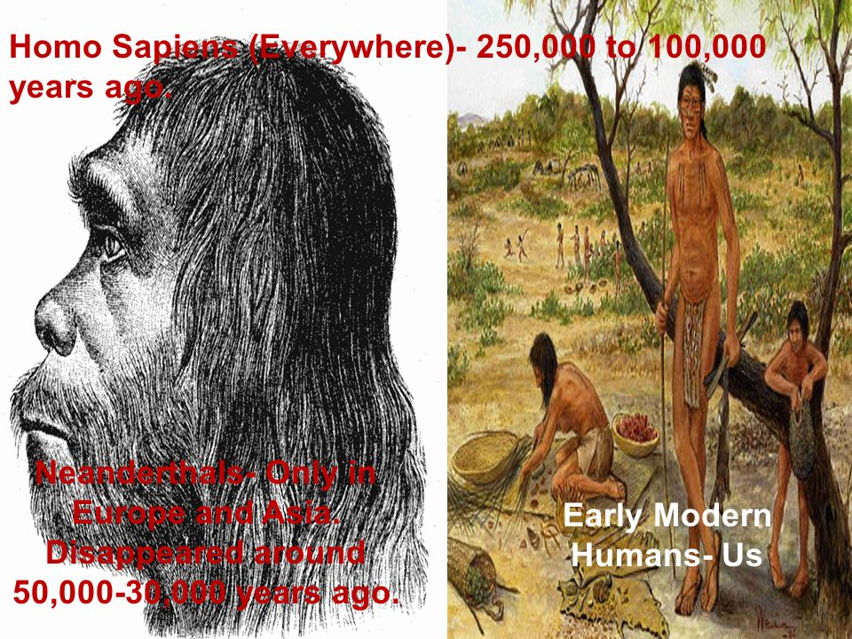 Early Modern Humans- Us