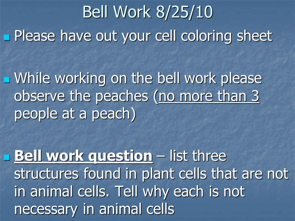 Bell Work 8 25 10 Please Have Out Your Cell Coloring Sheet