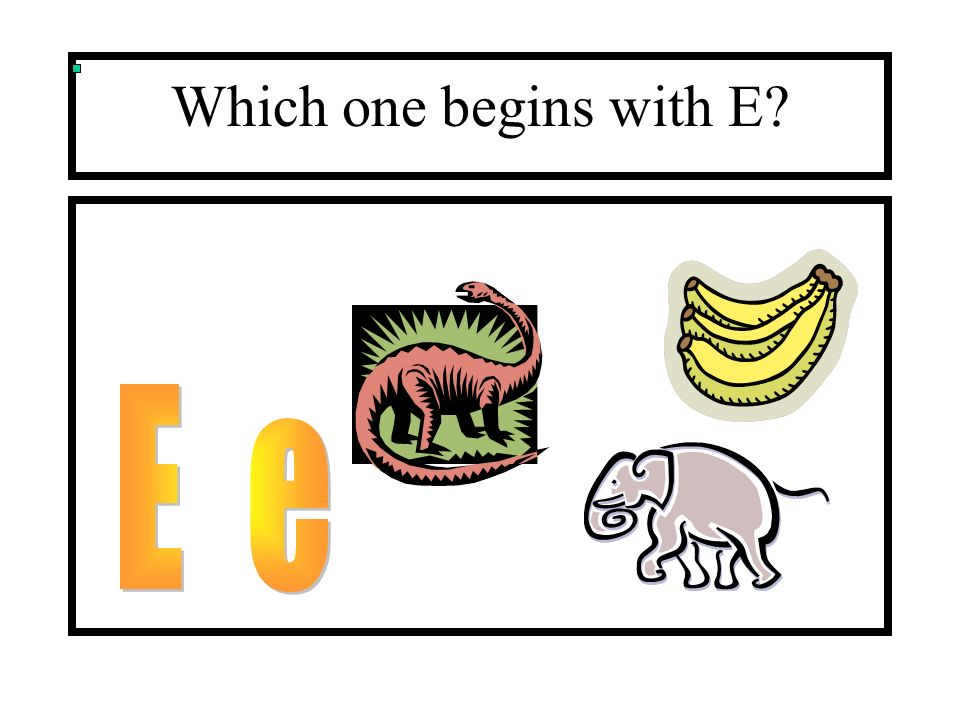 Which one begins with E E e