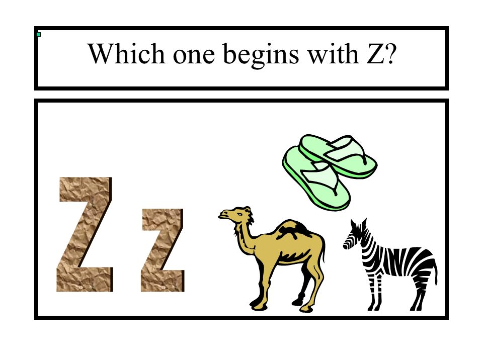 Which one begins with Z Z z