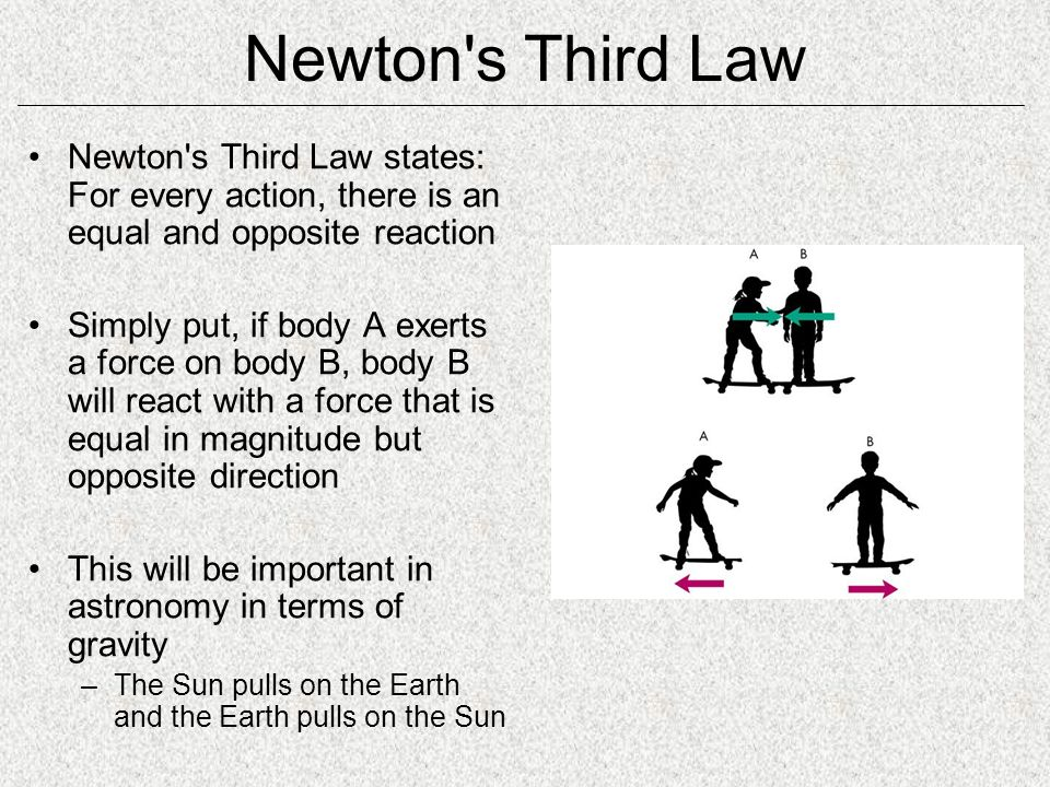 Newton s Third Law Newton s Third Law states: For every action, there is an equal and opposite reaction.
