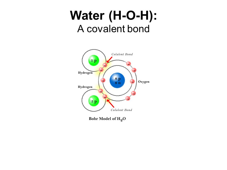 Water (H-O-H): A covalent bond