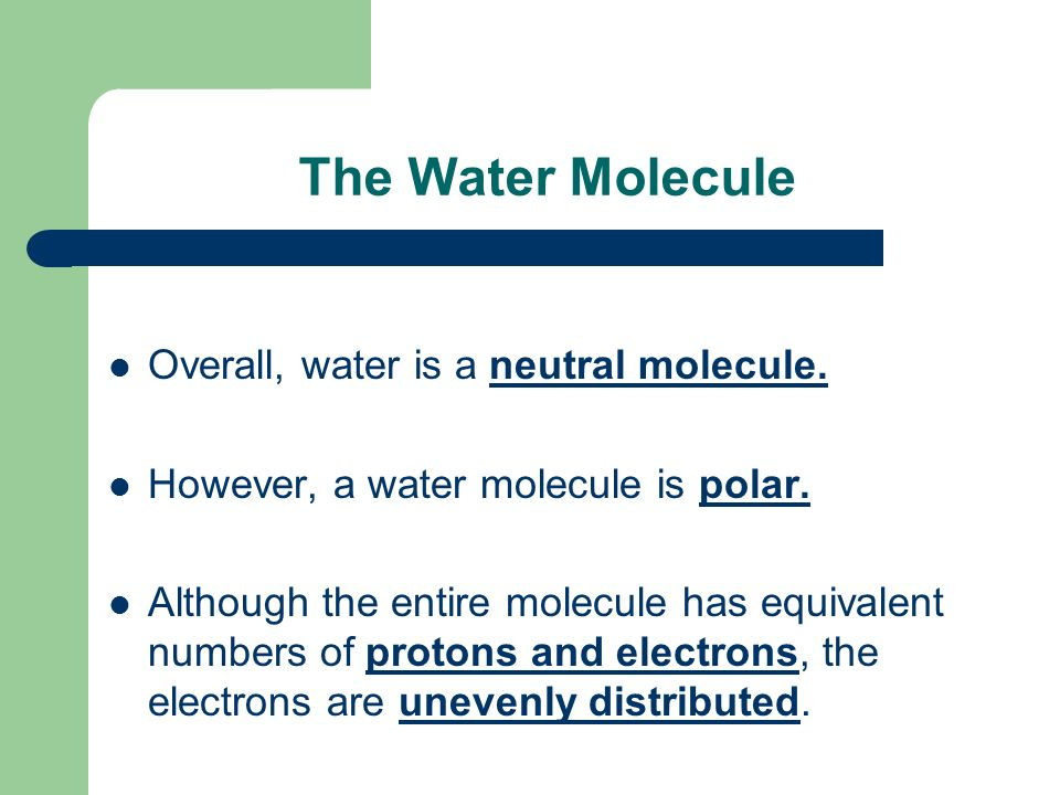 The Water Molecule Overall, water is a neutral molecule.
