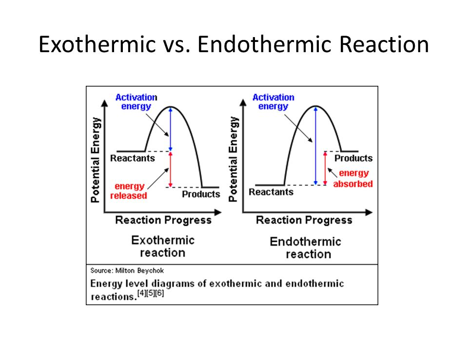 Exothermic Energy Diagram With Enzyme Block And Schematic Diagrams