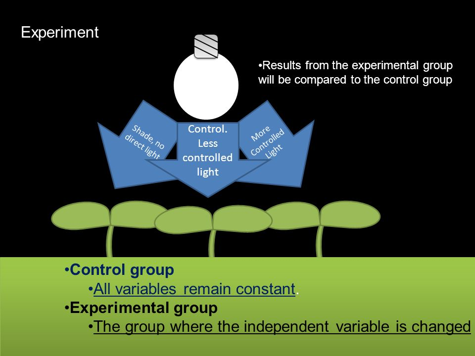 All variables remain constant. Experimental group