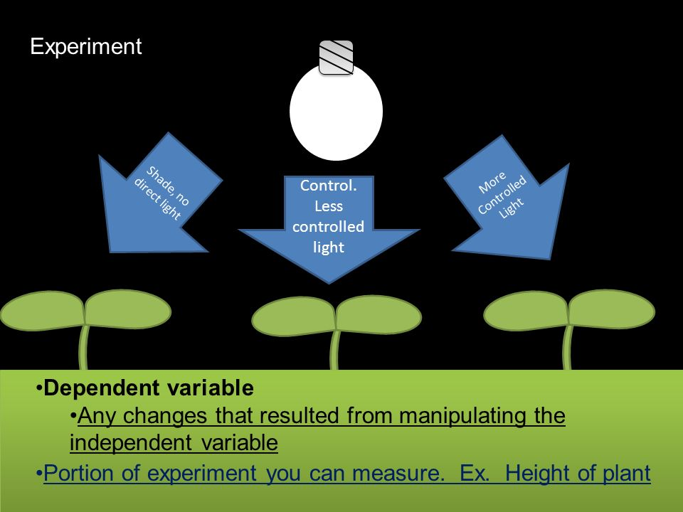 Any changes that resulted from manipulating the independent variable