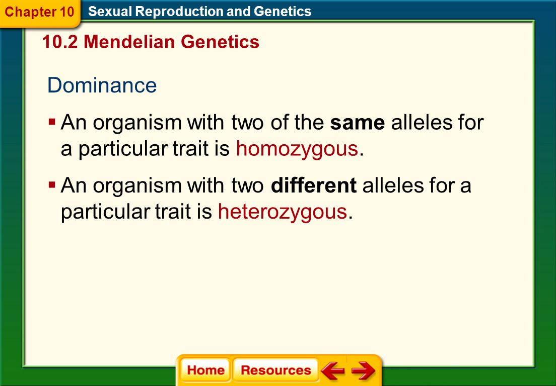Chapter 10 Sexual Reproduction and Genetics. 10.2 Mendelian Genetics. Dominance.