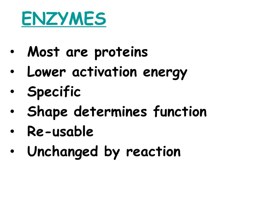 ENZYMES Most are proteins Lower activation energy Specific