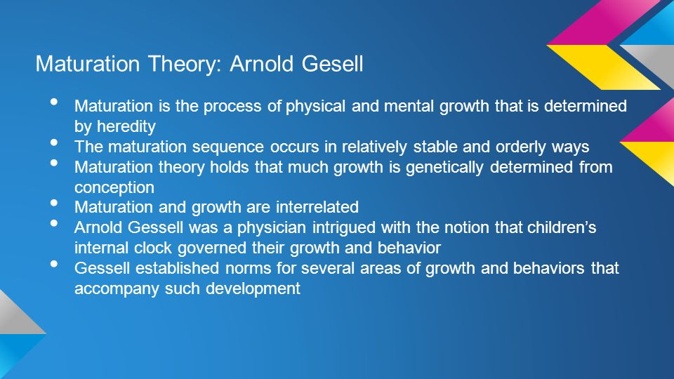 gesell maturation theory stages