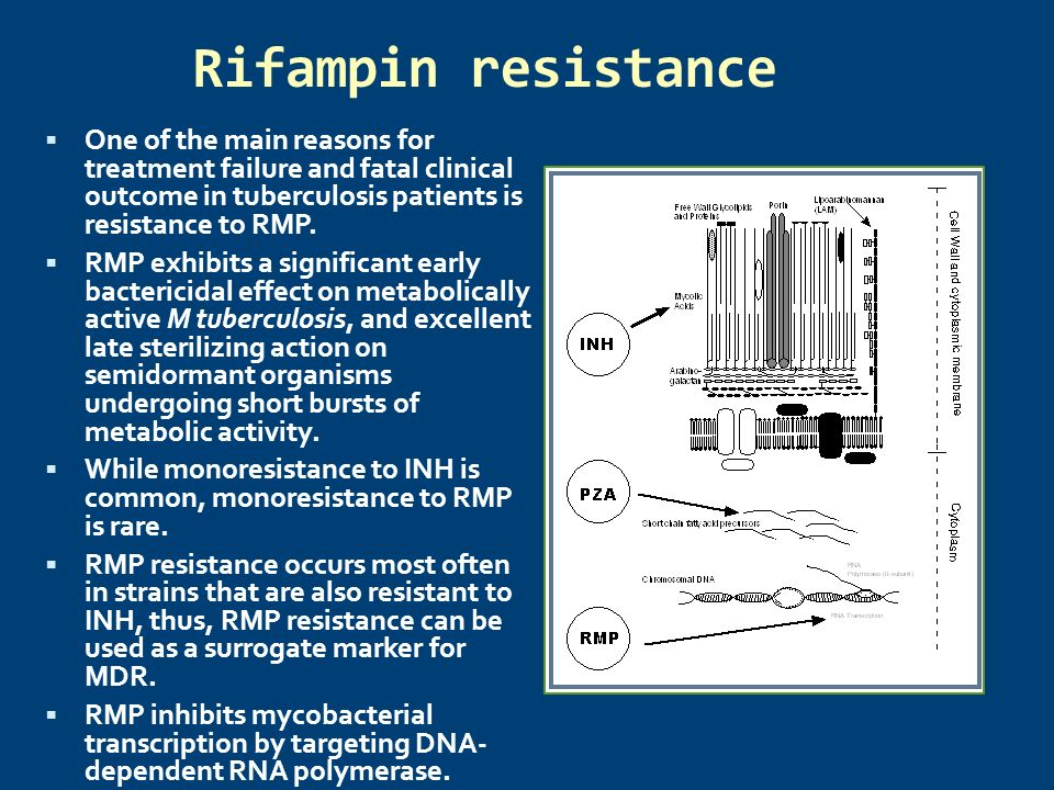 Rifampin resistance One of the main reasons for treatment failure and fatal clinical outcome in tuberculosis patients is resistance to RMP.
