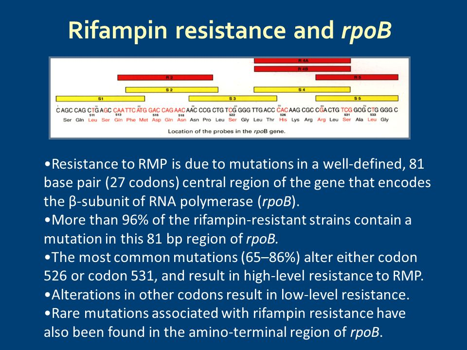 Rifampin resistance and rpoB