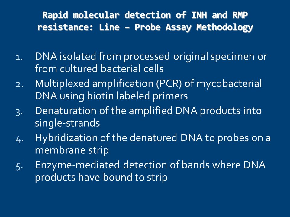 Denaturation of the amplified DNA products into single-strands