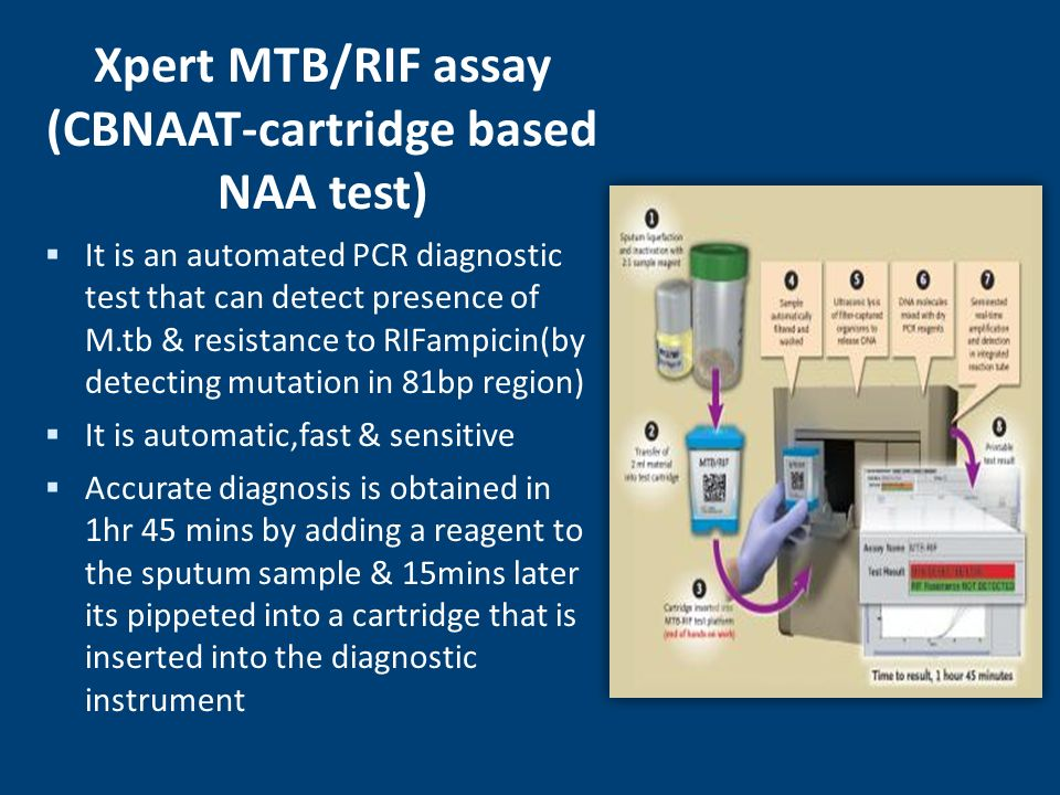Xpert MTB/RIF assay (CBNAAT-cartridge based NAA test)
