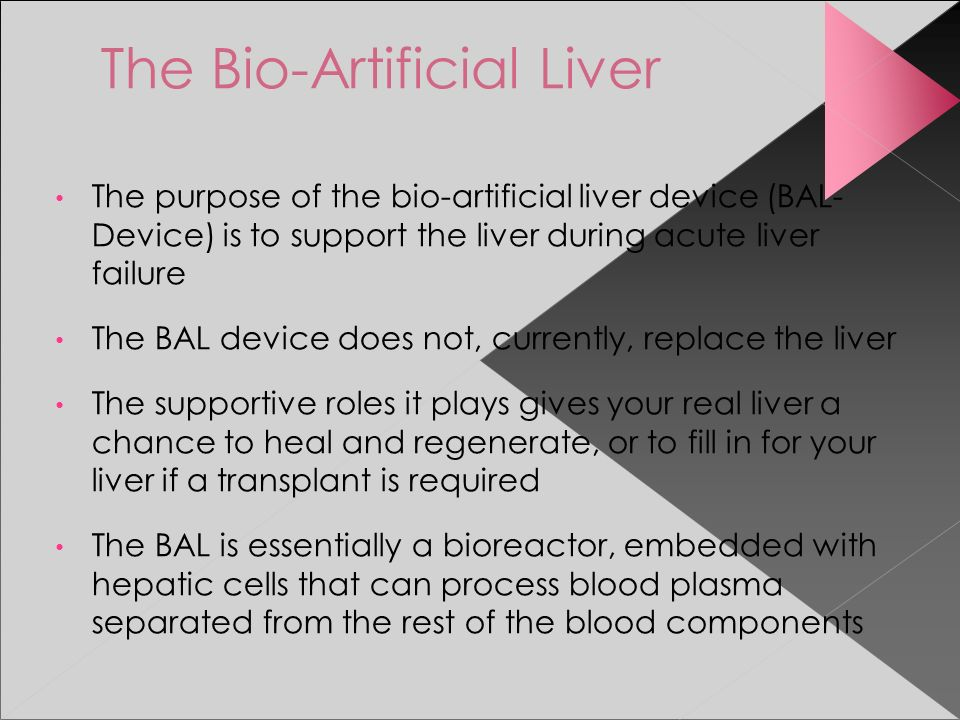 The Bio Artificial Liver Ppt Video Online Download