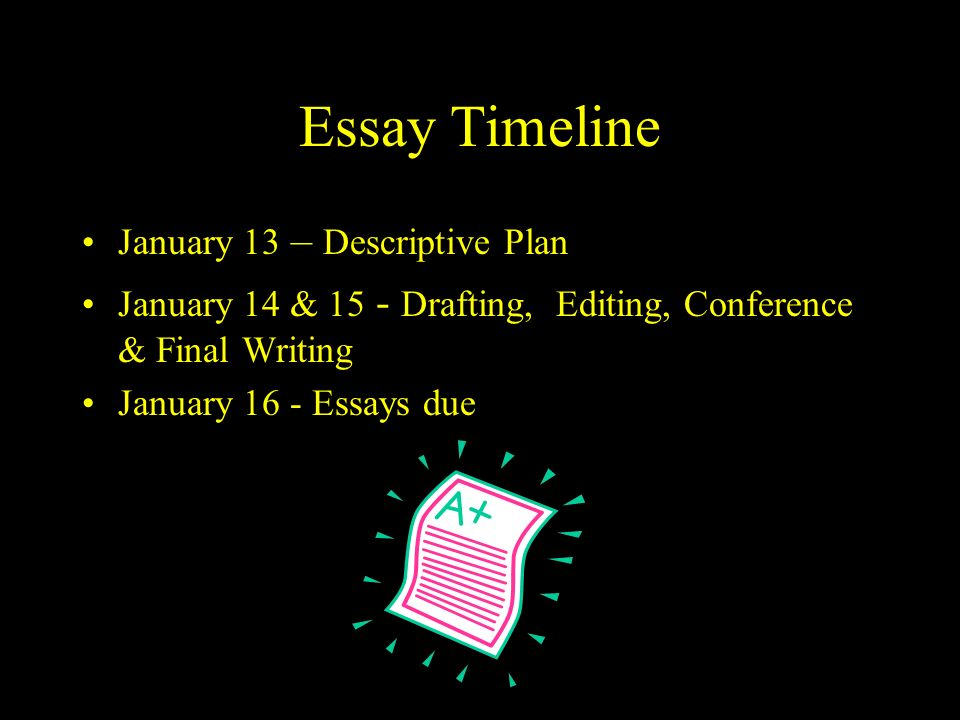 Essay Timeline January 13 – Descriptive Plan