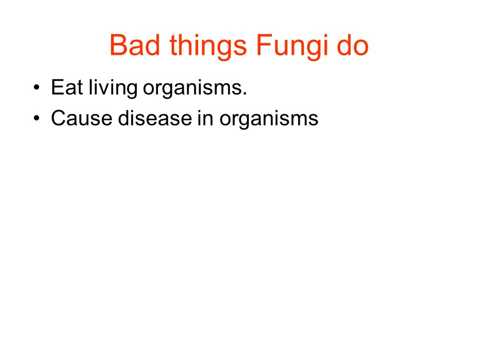 Bad things Fungi do Eat living organisms. Cause disease in organisms
