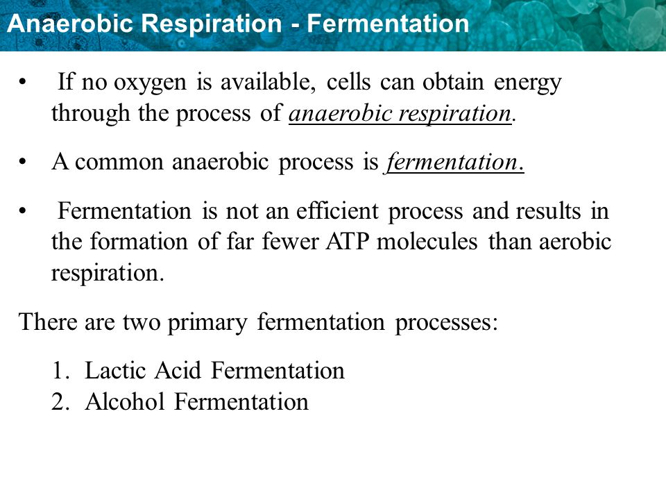 If no oxygen is available, cells can obtain energy through the process of anaerobic respiration.