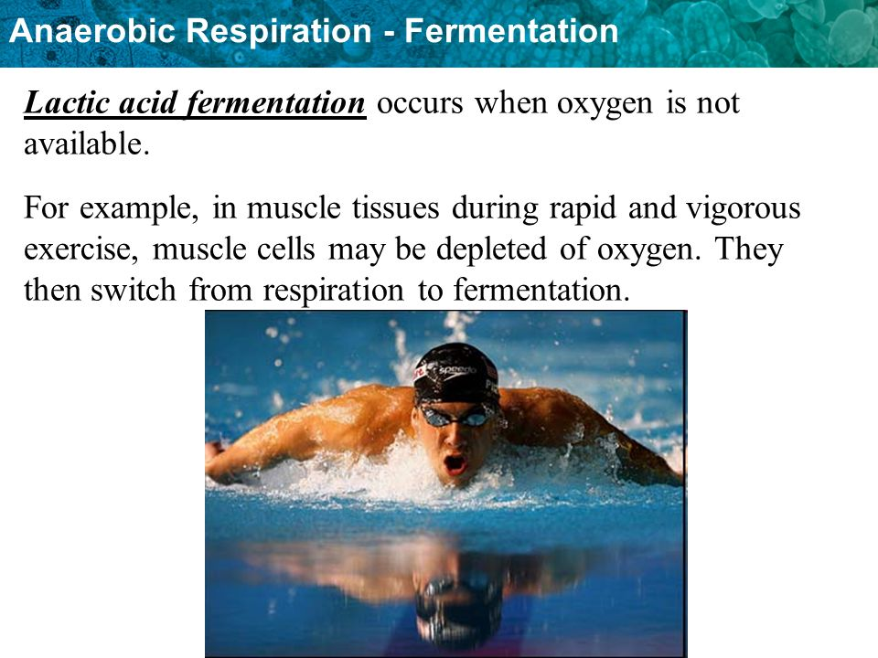 Lactic acid fermentation occurs when oxygen is not available.