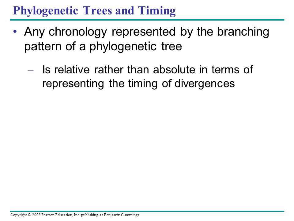 Phylogenetic Trees and Timing