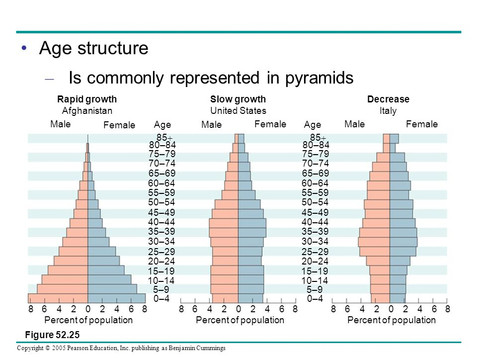 Age structure Is commonly represented in pyramids Figure 52.25