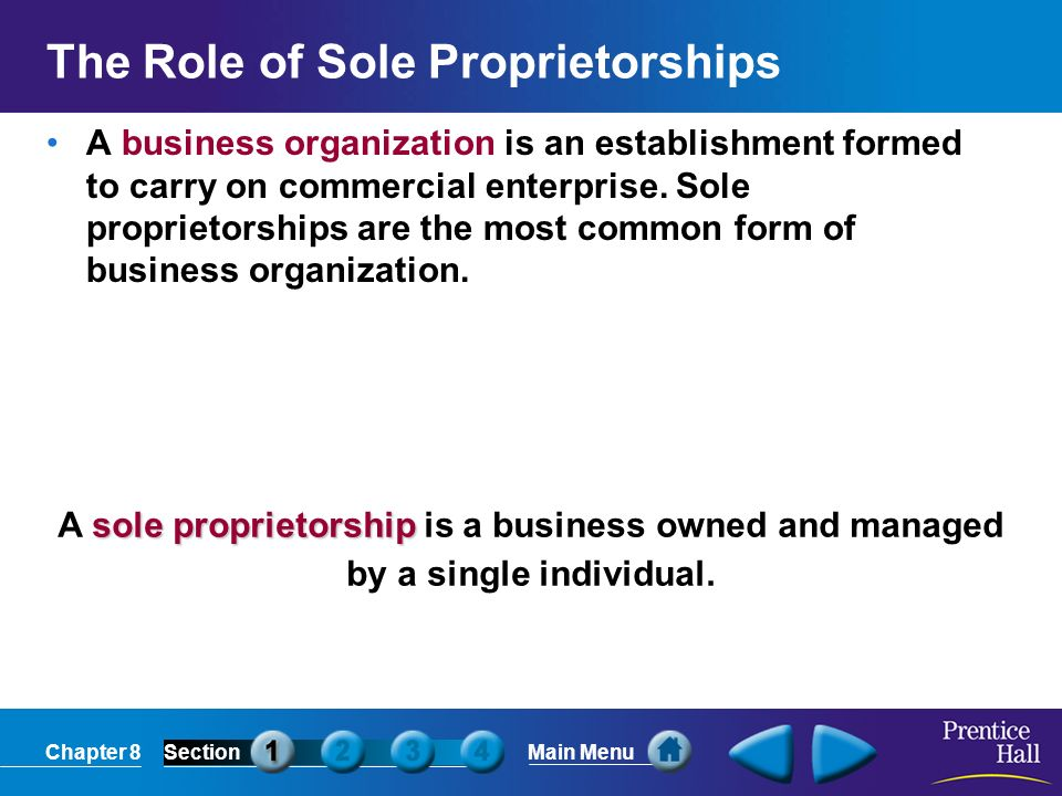 The Role of Sole Proprietorships