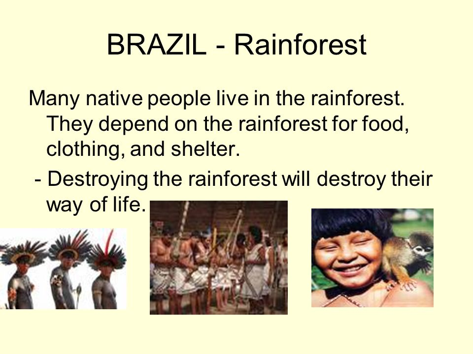 BRAZIL - Rainforest Many native people live in the rainforest. They depend on the rainforest for food, clothing, and shelter.