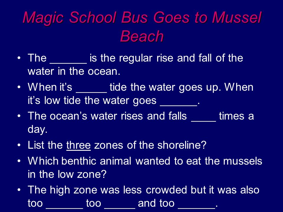 Magic School Bus Goes to Mussel Beach