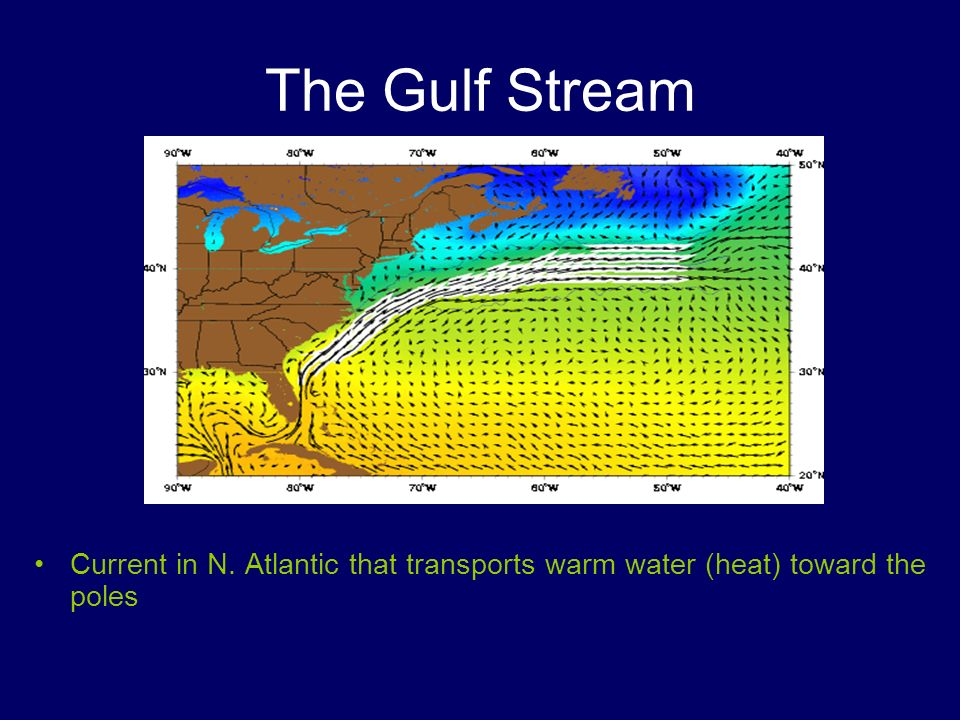 The Gulf Stream Current in N. Atlantic that transports warm water (heat) toward the poles