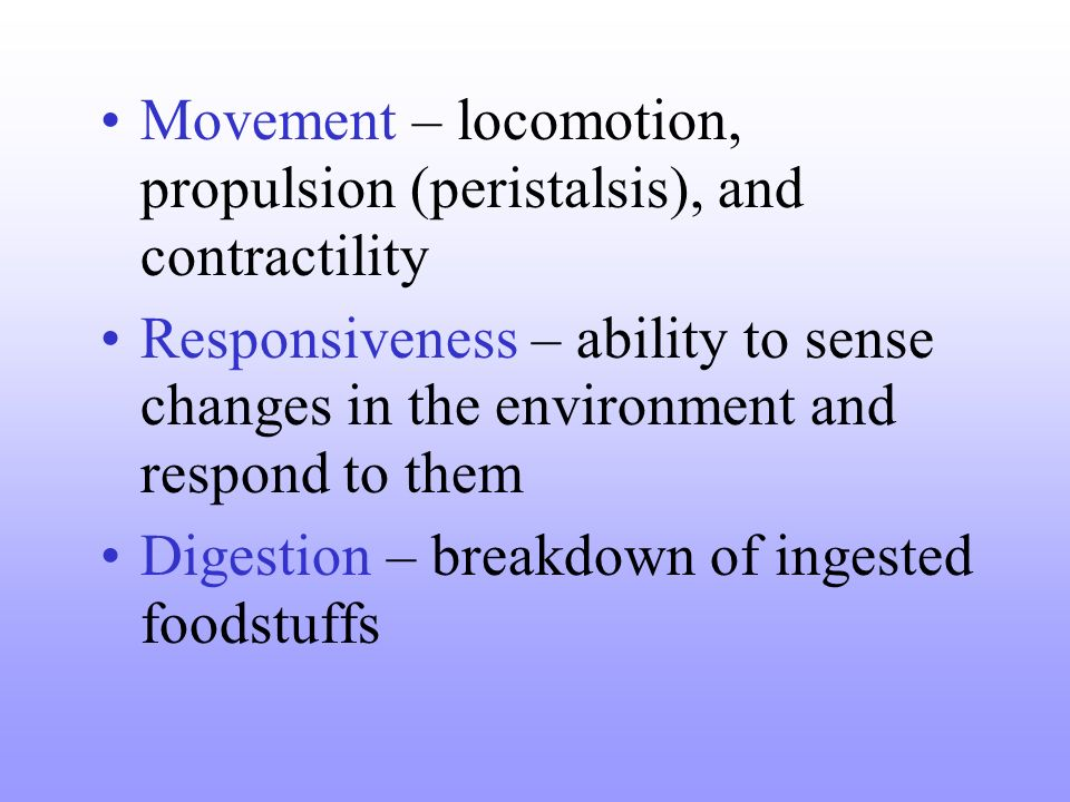Movement – locomotion, propulsion (peristalsis), and contractility