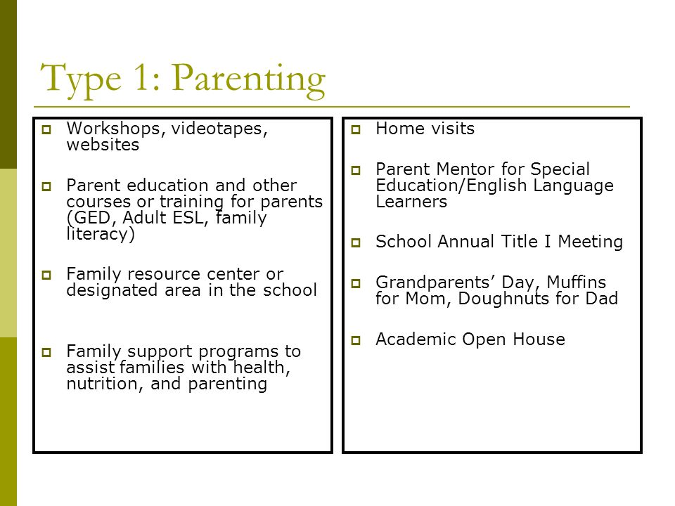 Type 1: Parenting Workshops, videotapes, websites