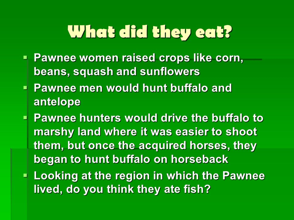 What did they eat Pawnee women raised crops like corn, beans, squash and sunflowers. Pawnee men would hunt buffalo and antelope.