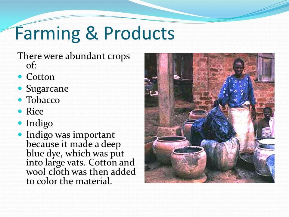 Farming & Products There were abundant crops of: Cotton Sugarcane