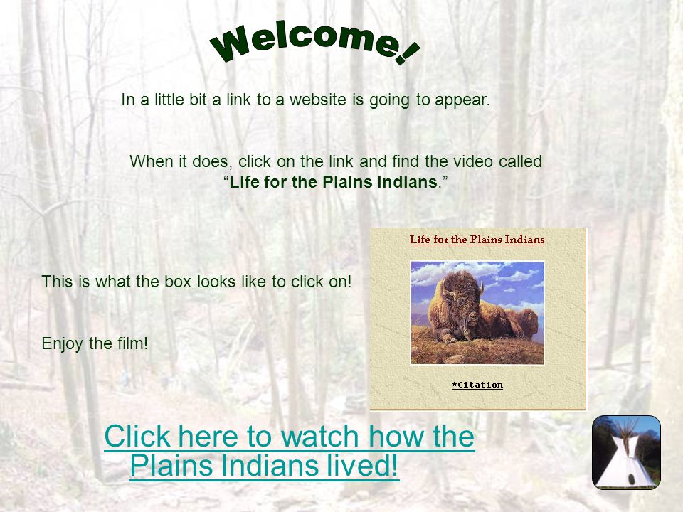Welcome! Click here to watch how the Plains Indians lived!