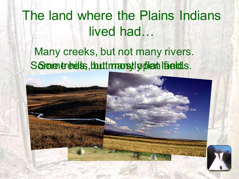 The land where the Plains Indians lived had…