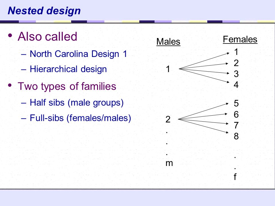 Also Called Nested Design Two Types Of Families Females