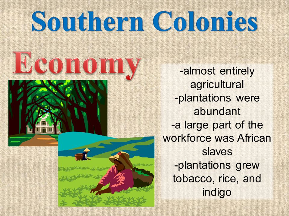 Economy Southern Colonies -almost entirely agricultural