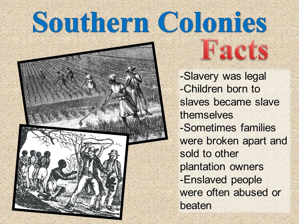 Southern Colonies Facts