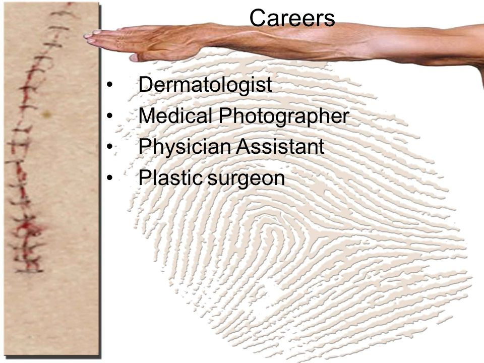 Careers Dermatologist Medical Photographer Physician Assistant