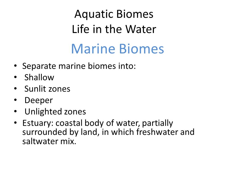 Aquatic Biomes Life in the Water