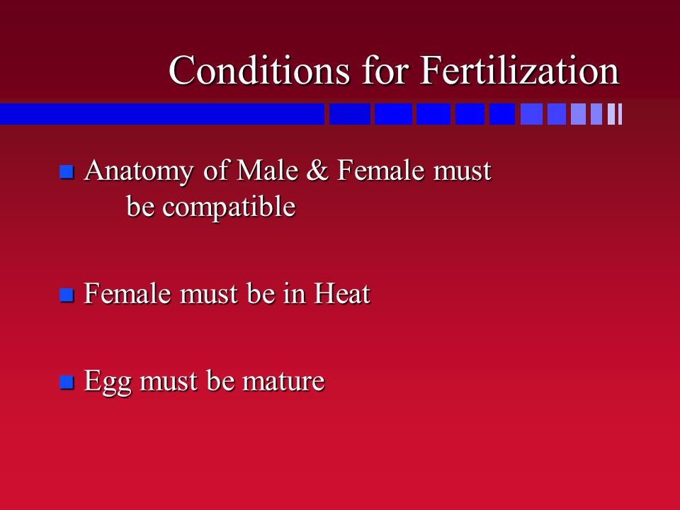 Conditions for Fertilization