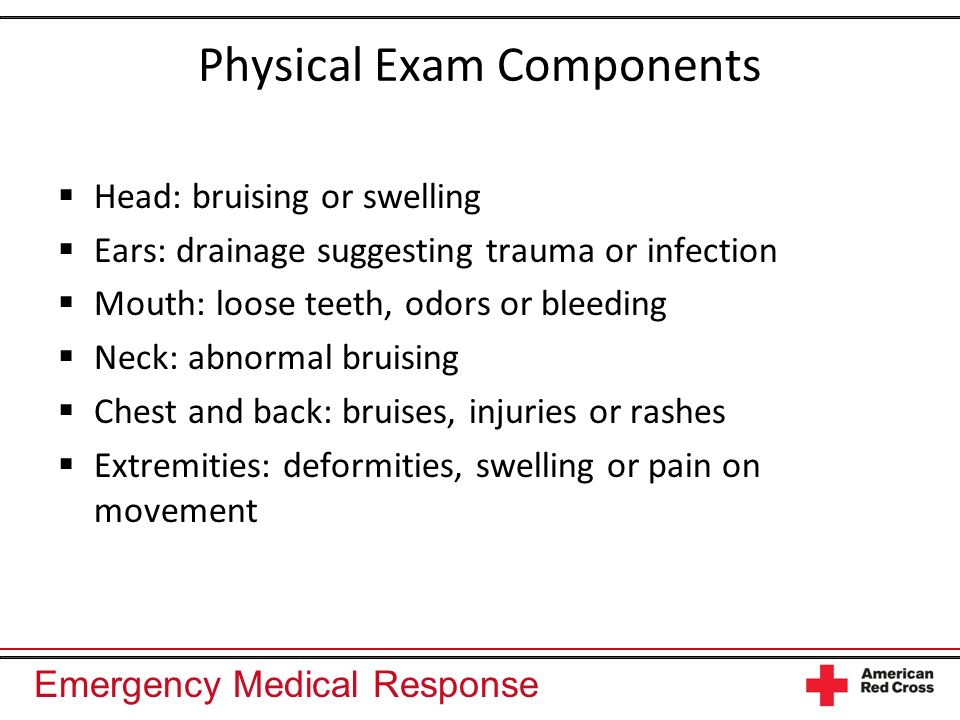 Physical Exam Components