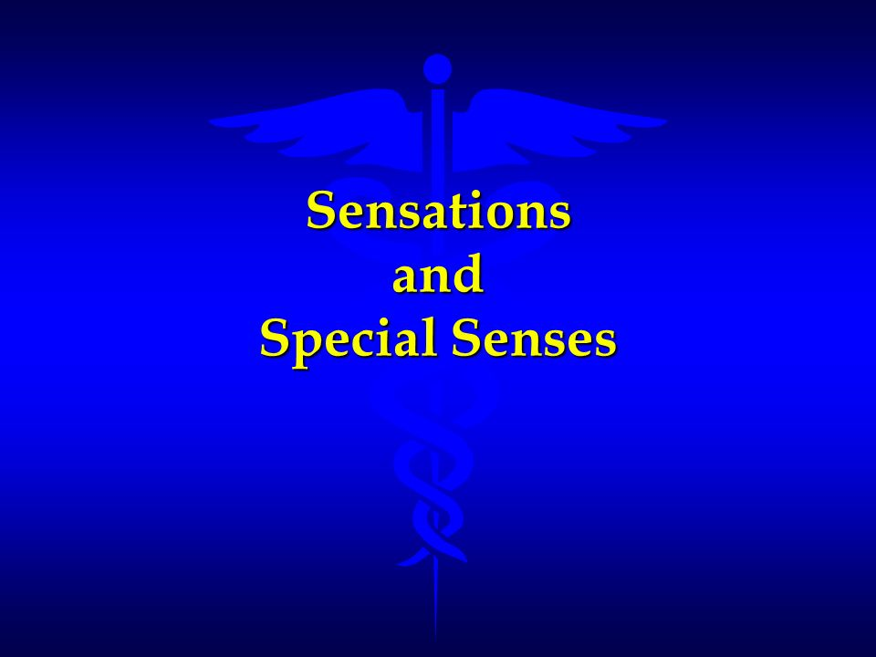 Sensations and Special Senses