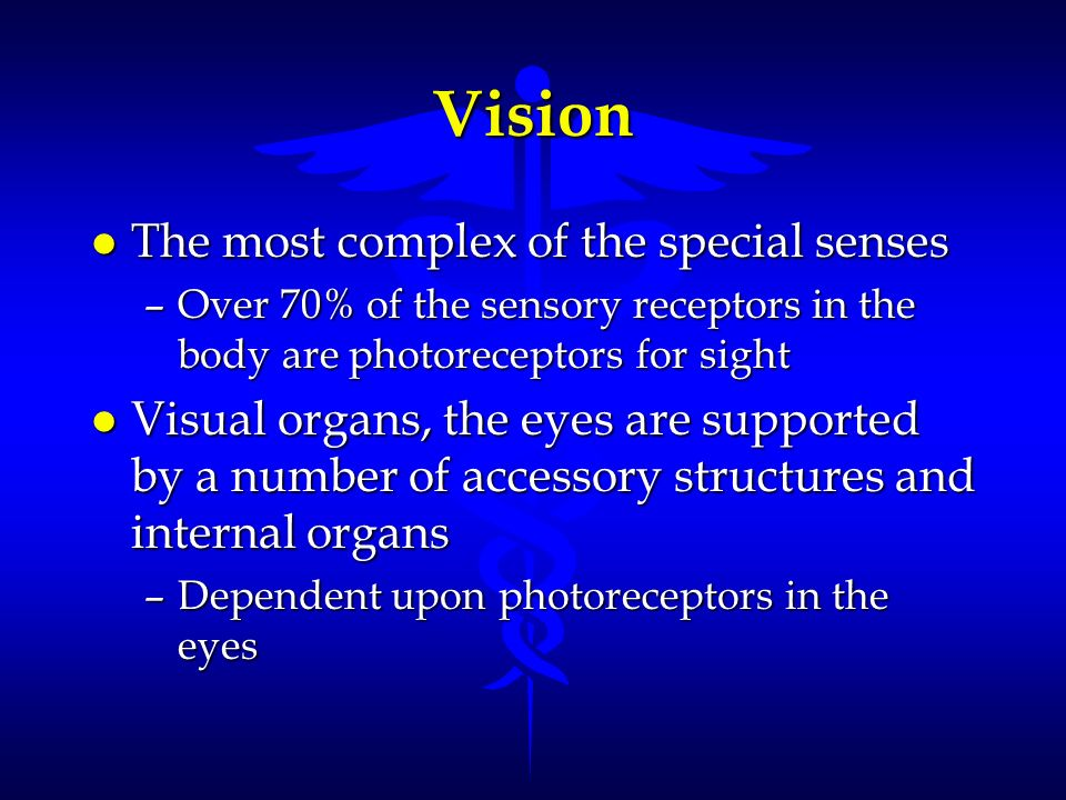 Vision The most complex of the special senses
