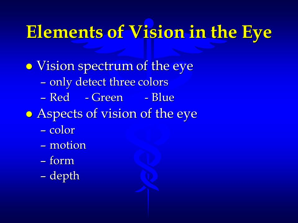 Elements of Vision in the Eye