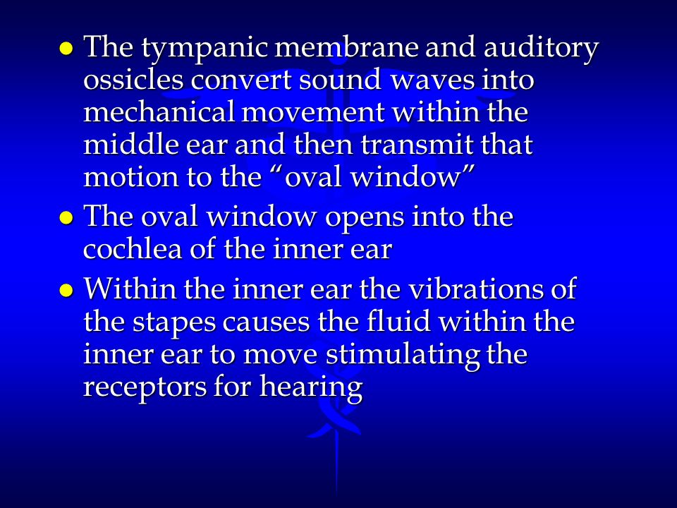The tympanic membrane and auditory ossicles convert sound waves into mechanical movement within the middle ear and then transmit that motion to the oval window