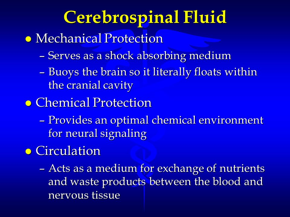 Cerebrospinal Fluid Mechanical Protection Chemical Protection
