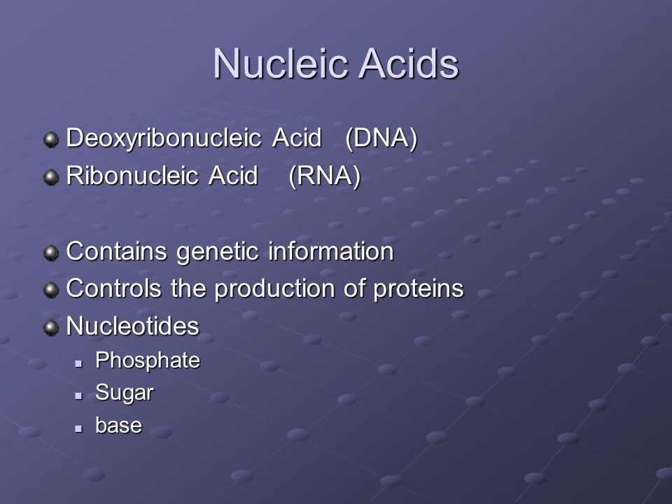Nucleic Acids Deoxyribonucleic Acid (DNA) Ribonucleic Acid (RNA)