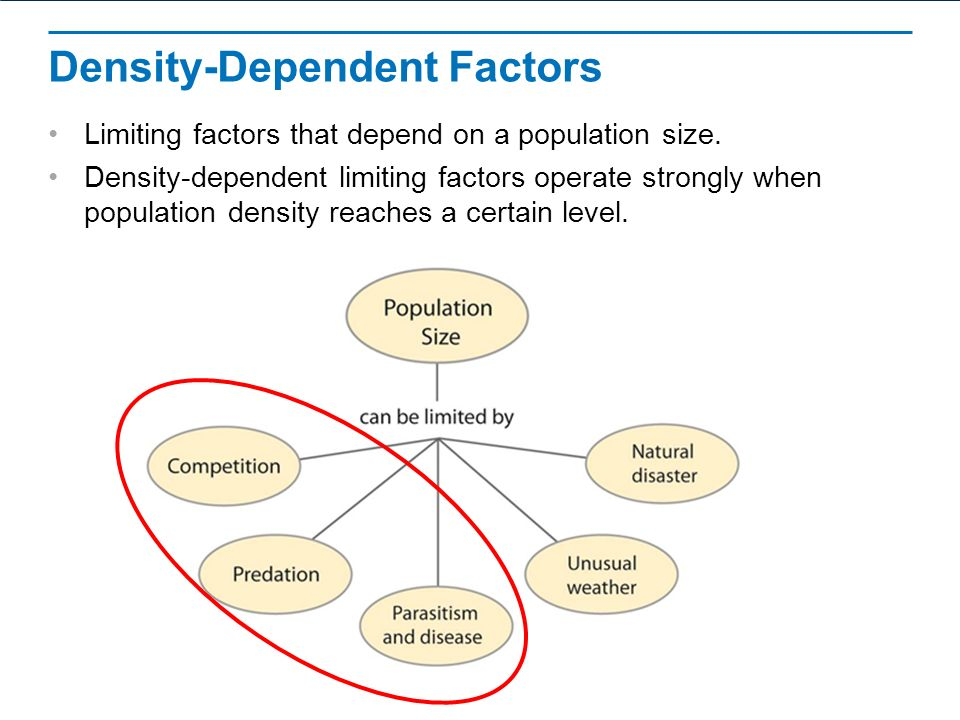 Density Dependent Factors Examples Gallery Example Cover Letter