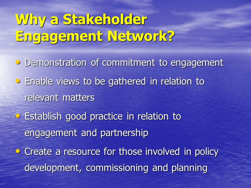 Why a Stakeholder Engagement Network