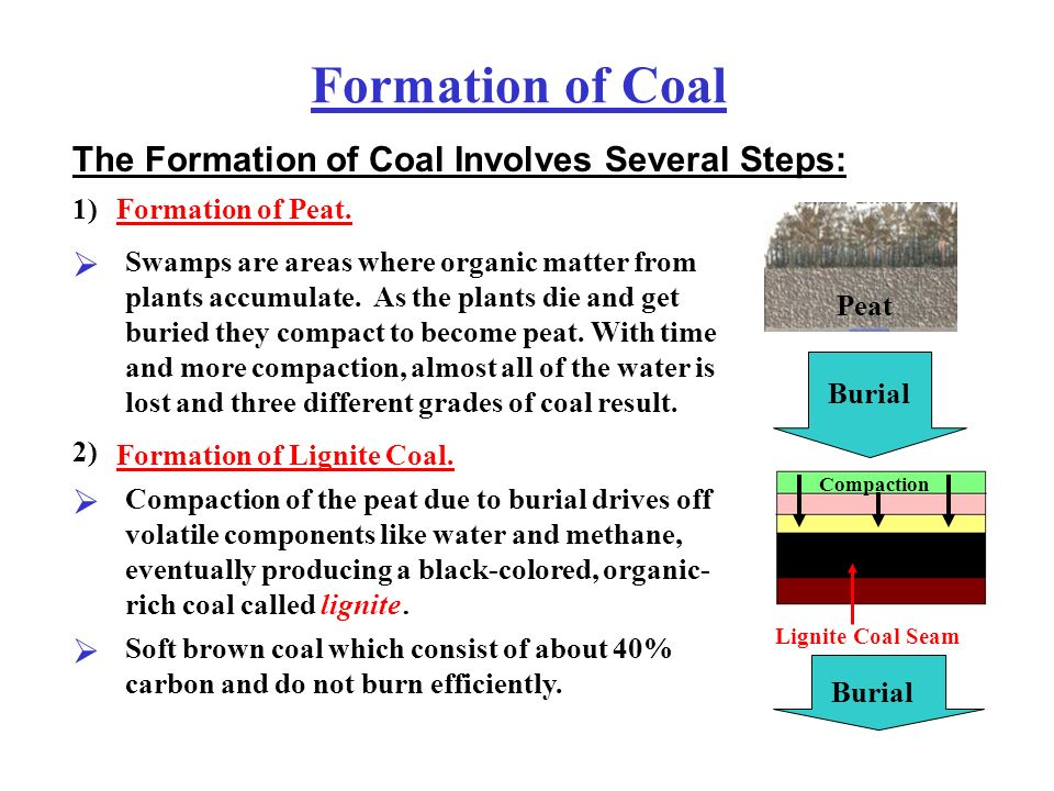 formation of coal fossil fuels ppt video online download